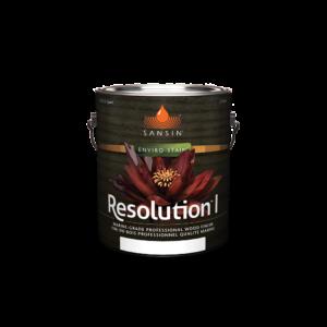 Resolution I